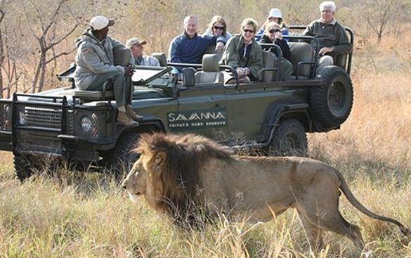 Savanna Lodge game safari vehicle
