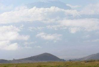 Memorable African Safaris – Savanna Plus Part 3 – Elephants, Rhinos and Hippos