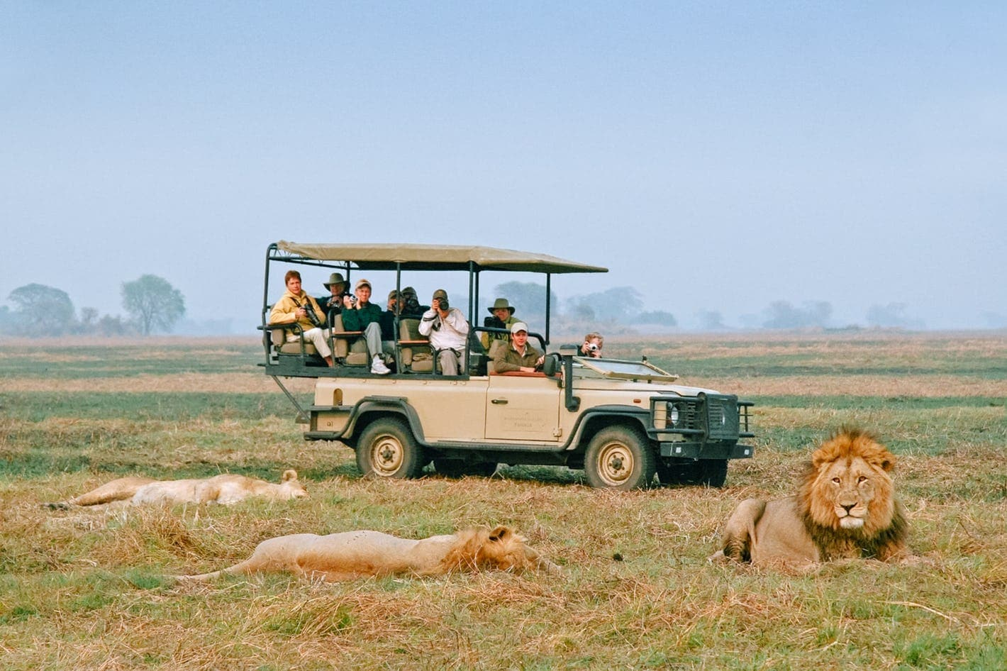 game-drive-busanga-zambia-timbuktu-travel