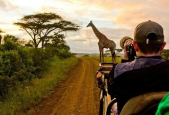 How to Have the Best Photographic Safari Possible