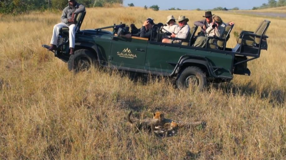 private group tour african safari