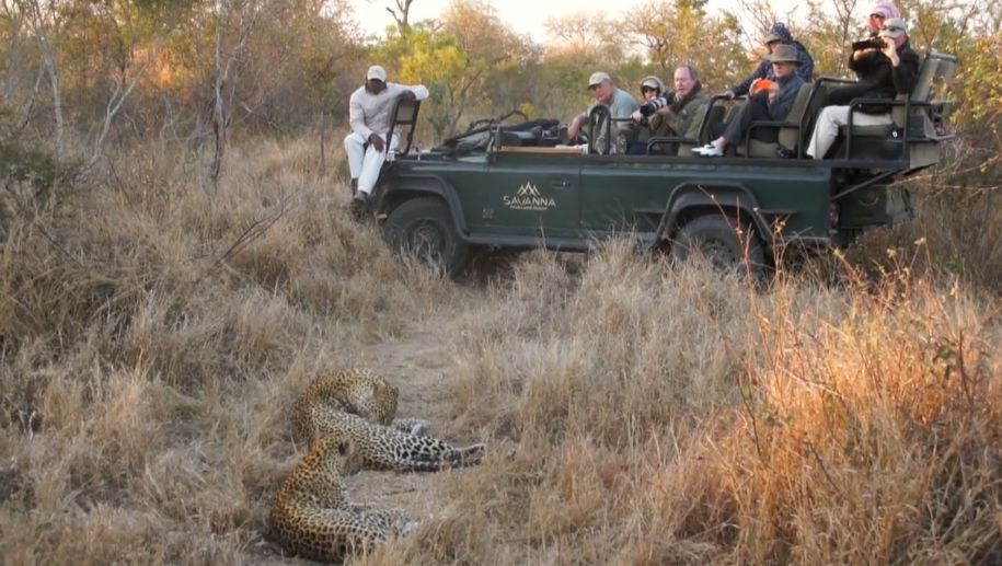 customised authentic australian travel tour to africa