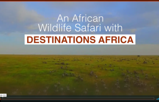 Authentic luxury South and Eastern African Wildlife Safari Holiday Packages video presentation