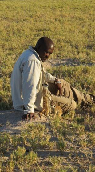 African-man-in-Botswana-with-meerkats-2