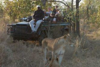 You Deserve a True African Safari Experience with the SAVANNA PLUS SAFARI 2020