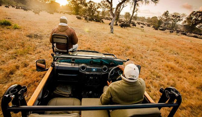Sabi Sabi African safari trackers in jeep with game