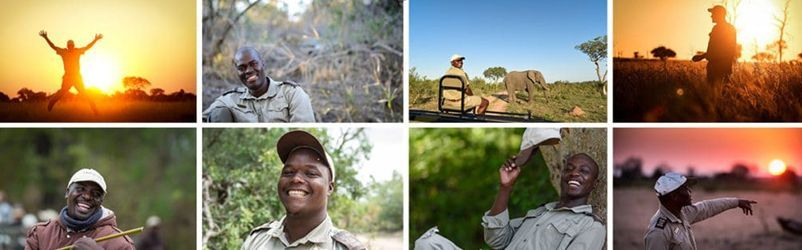 Sabi Sabi African safari experience trackers collage
