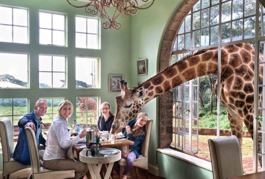 Giraffe Manor Nairobi Kenya luxury african travel safari