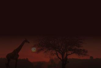 DESTINATIONS AFRICA INFORMATION UPDATE